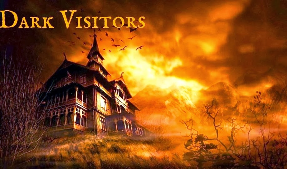 Visit Dark Visitors By Clicking On The Image Below