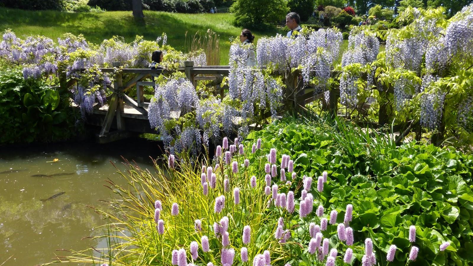 Mon jardin entre terre et mer petite escapade dans le for Le jardin 3 minutes sur mer