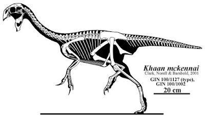 Khaan skeleton