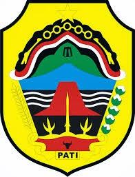 Pengumuman CPNS Kab Pati 2013 http://cpns.patikab.go.id/