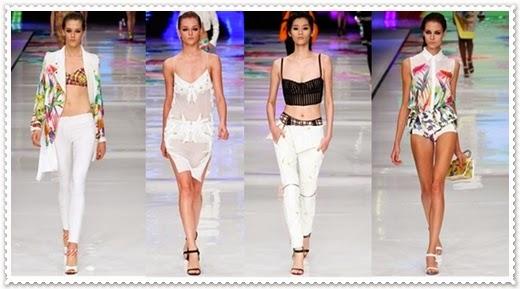 Just Cavalli 2014 Frühjahr/Sommer Modeschau Damen