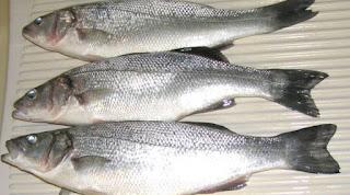 Ciri-ciri Makanan Mengandung Formalin dan Boraks