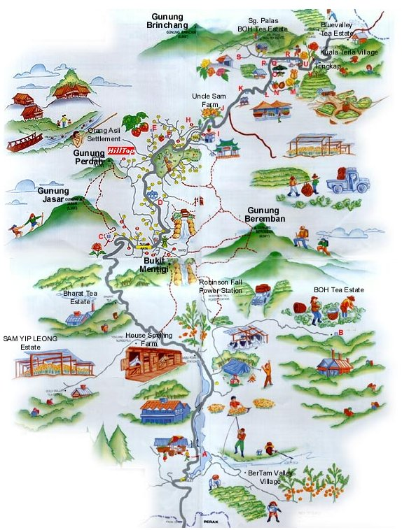 Cameron Highland Map