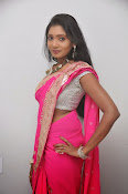 Actress Nisha Latest Photos in Pink saree-thumbnail-11