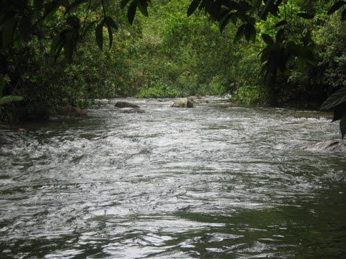Sri Lankan Best Places Natural Bathing Places In Sri Lanka Paravithota Ingiriya