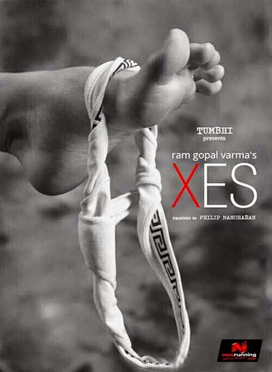 free xes