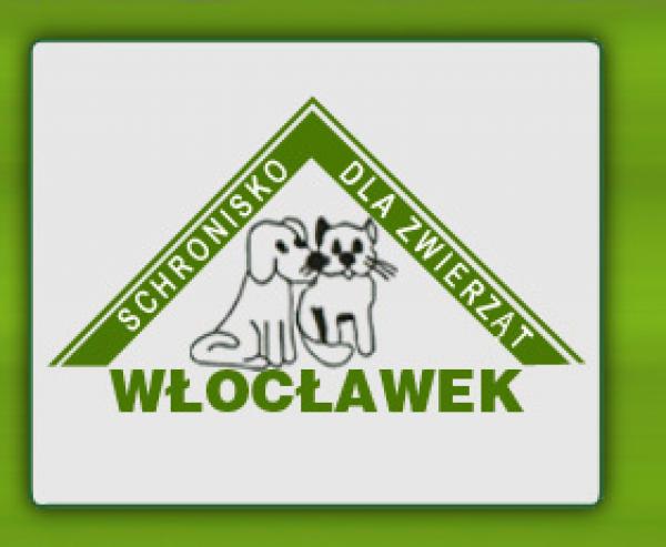 Schronisko Włocławek