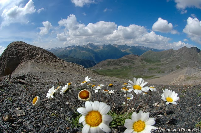 landscape photography composition rules