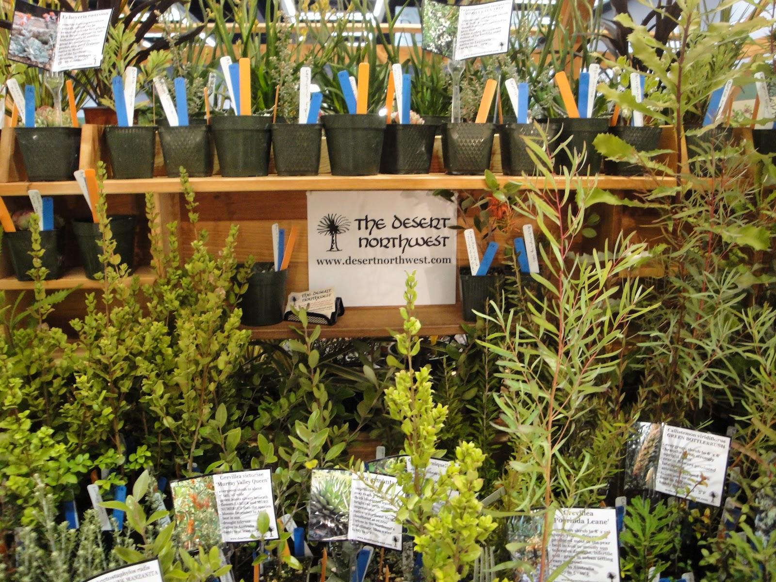 A Next Generation Gardener: Take a trip to the Desert Northwest: Ian ...