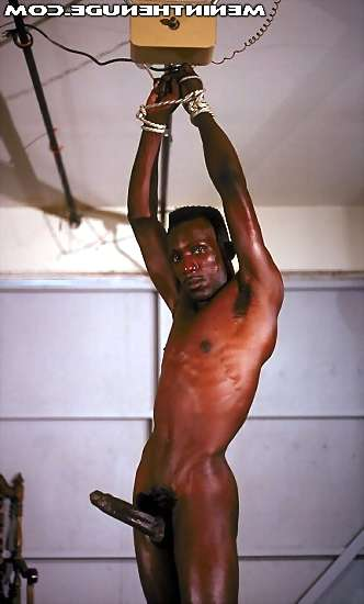 image of porn hub boy