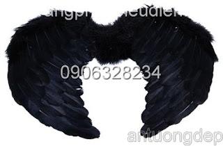 bán cánh thiên thần màu đen