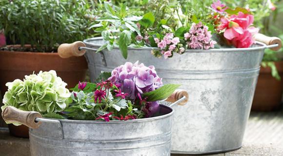 Arreglos florales rústicos - El Pais de Sarah