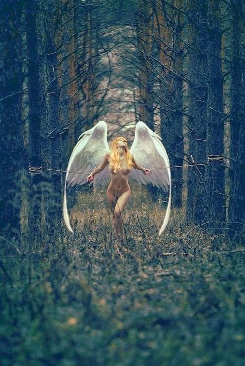 ange blonde nue les poignet attaché à deux arbres