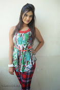 Neha deshpande Photos at Dil Diwana press meet-thumbnail-13