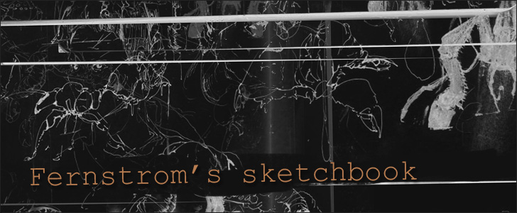 Fernstrom's sketchbook