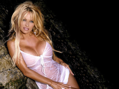 Canadian American Pamela Anderson Images