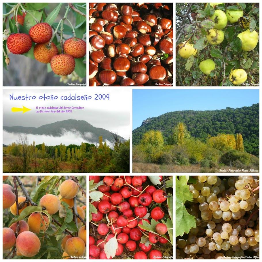 Nuestro otoño cadalseño