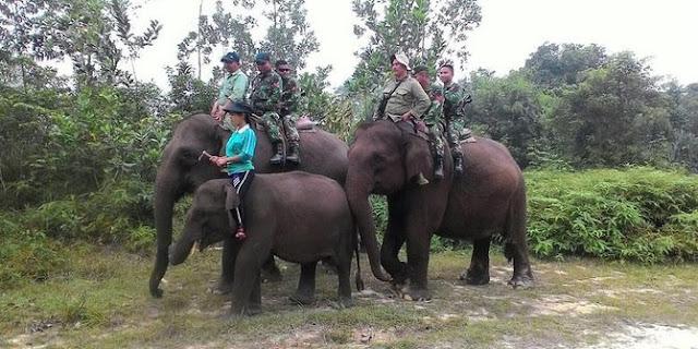 Prajurit Kostrad patroli naik gajah