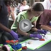 SPARK; Science Summer Studies for Middle School Students