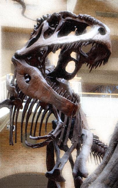 Giganotosaurus, Fernbank Museum of Natural History