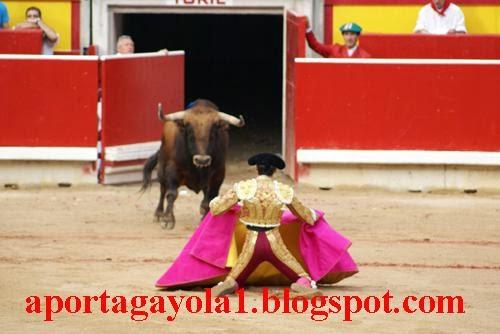 AportaGayola1.blogspot.com