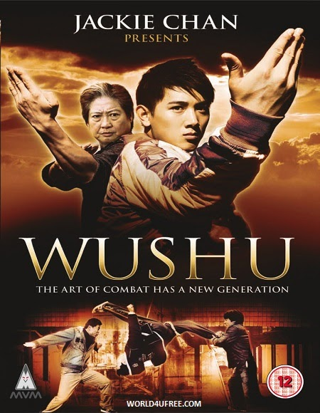Wushu 2008 Hindi Dubbed DVDRip 480p 300mb