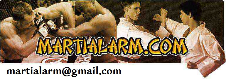Martialarm Martial Arts Kung Fu Wooden Dummy Training Alternative