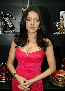 Celina Jaitley Show Deep Cleavages Photos