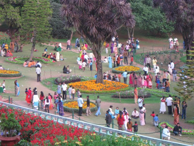 I am a free spirit and lover of india botanical garden to for Terrace meaning in tamil