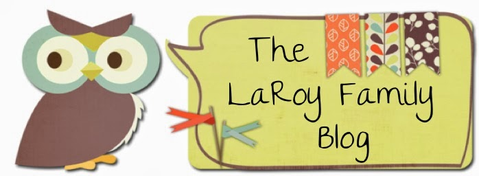 The LaRoy Family Blog