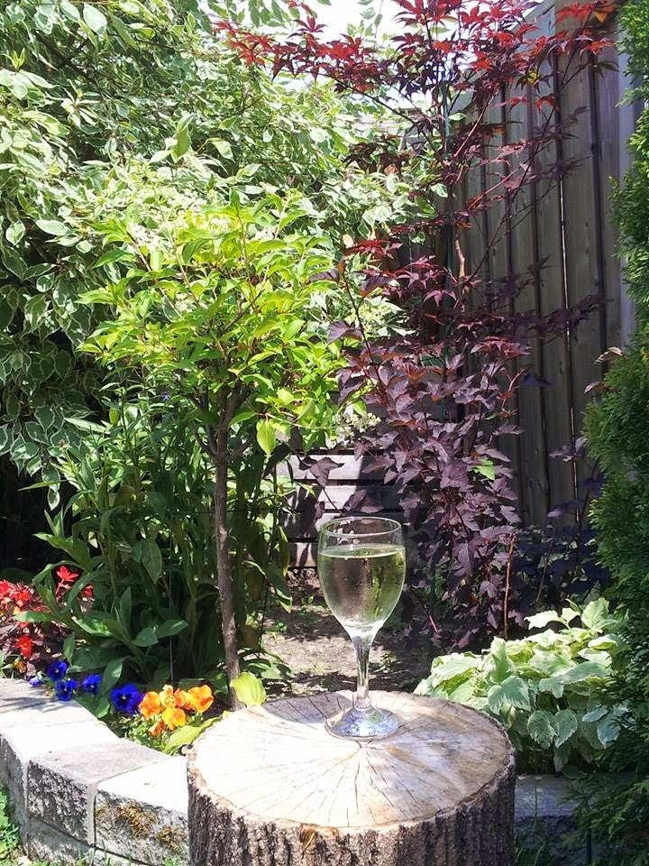 summer garden, wine, alone time