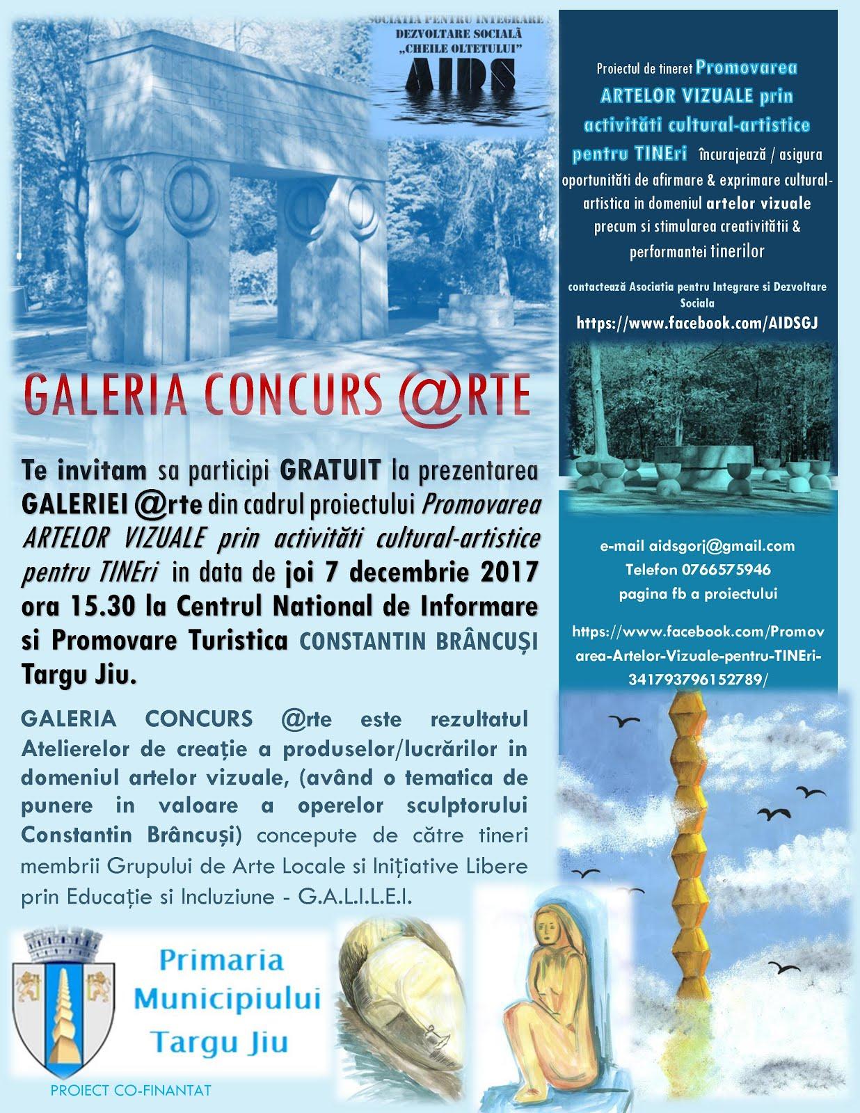 GALERIA CONCURS @rte - din cadrul proiectului Promovarea ARTELOR VIZUALE prin activităti cultural-a