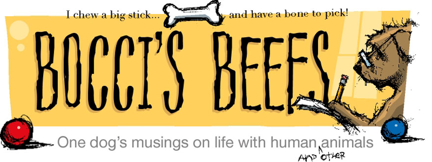 Pet Blog By Bocci @ Bocci's Beefs