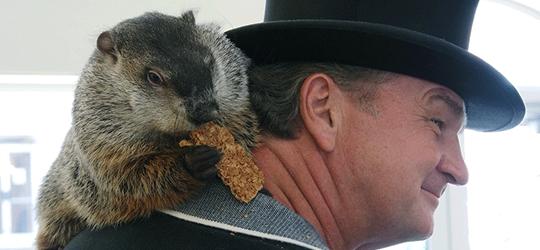 El Día de la Marmota - Cine de Escritor