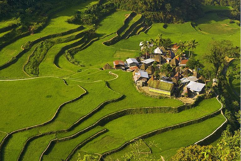 Go philippines rice terraces of the philippine cordilleras for The terraces 2