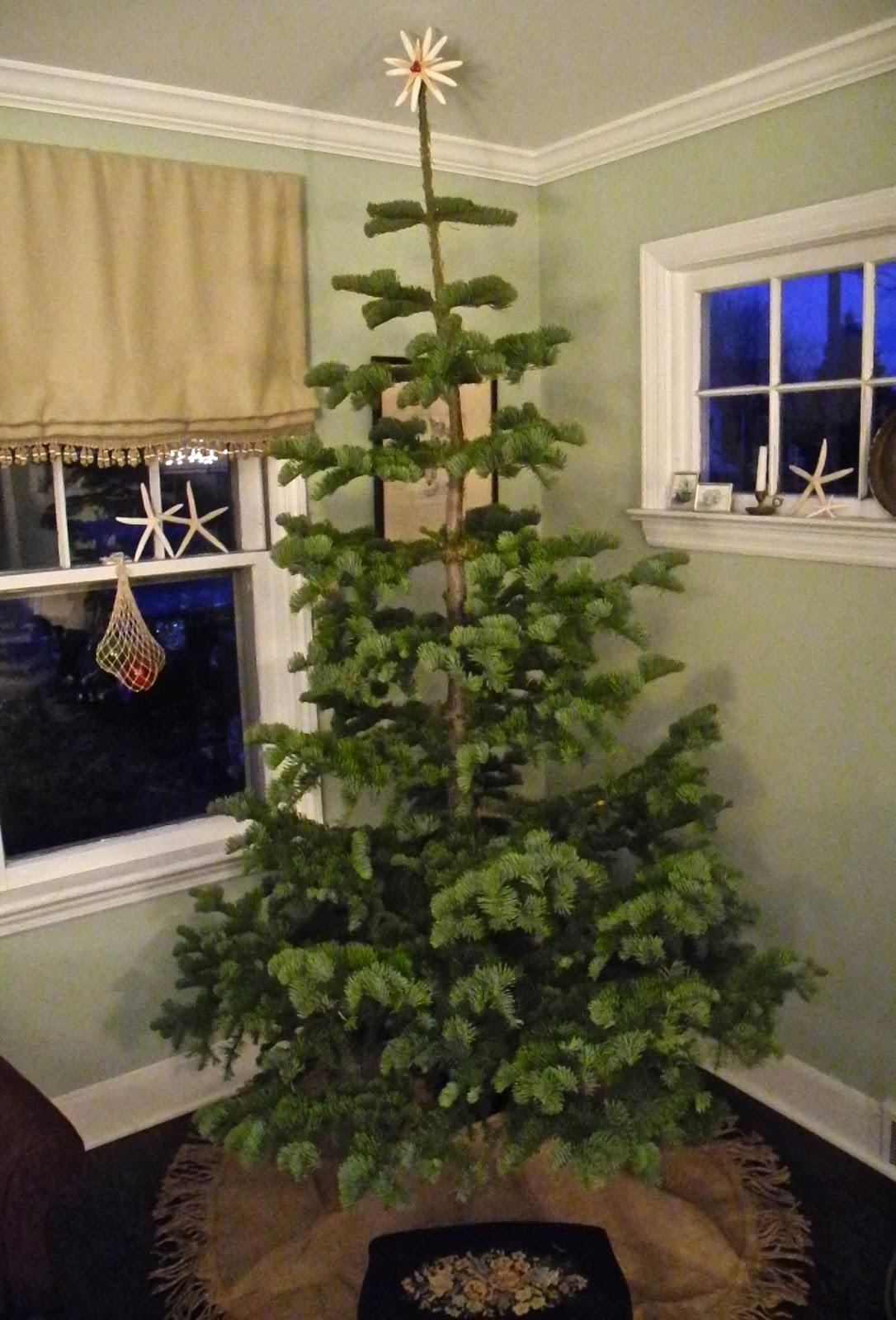 SeaglassSundays: A Silvertip Christmas