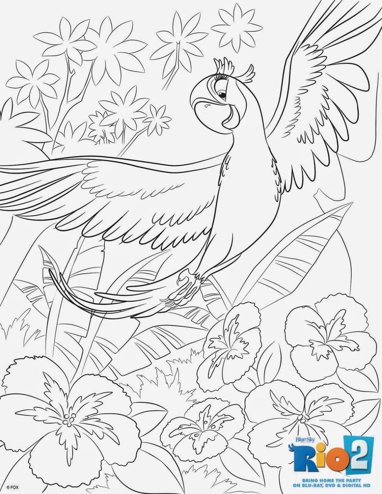 new age mama rio 2 features coloring u0026 activity sheets
