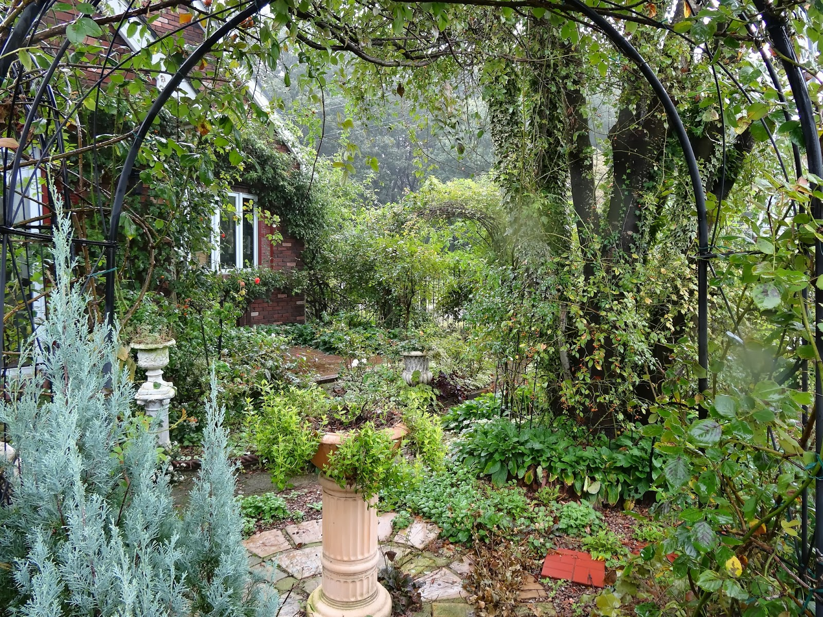Le jardin secret garden now for Le jardin secret chicha