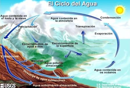 Imagen del ciclo del agua indicando sus procesos