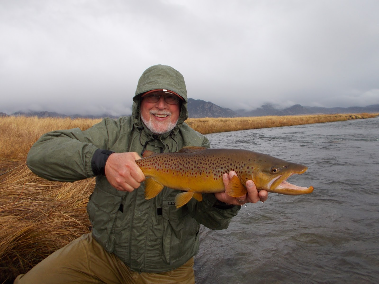 Addictive angling colorado book your trophy brown trout trip for Colorado fishing trips