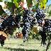 Виноград...