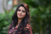 Shamili dazzling photos in saree-thumbnail-4