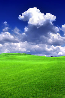 Green Grass iPhone Wallpaper