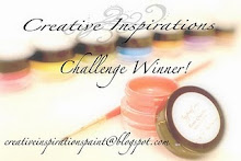 I Won at Creative Inspirations Paint