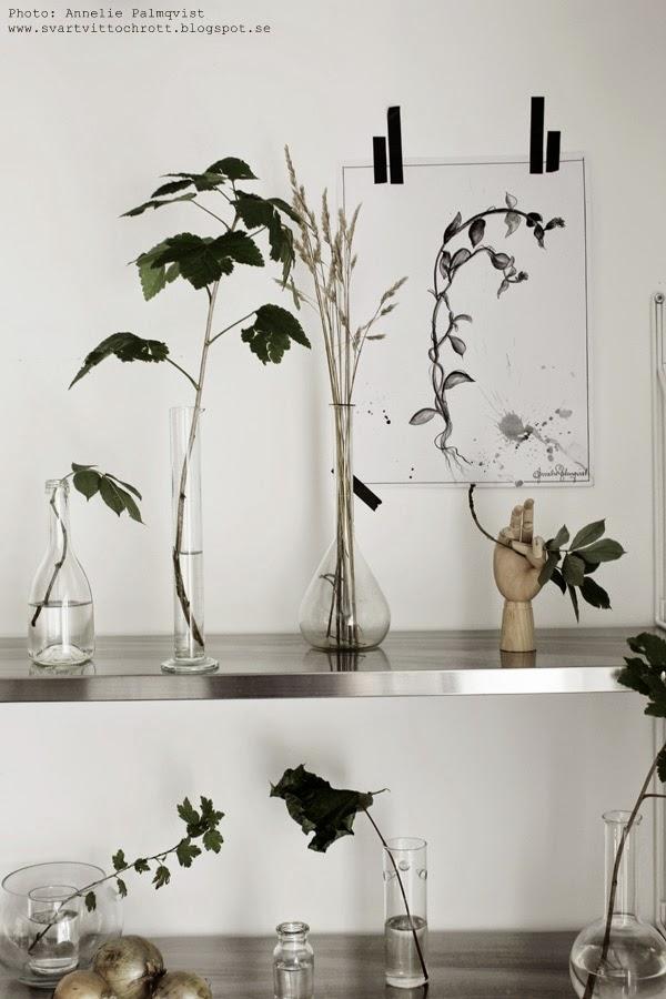 gröna växter i skogen på en hylla i köket, hyllor, hyllan, hay hand, print, prints, tavla, tavlor, blomma,