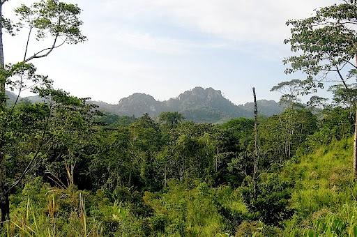 Bosawas Biosphere, Nicaragua