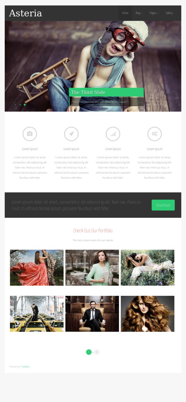 Asteria Free Portfolio WordPress theme