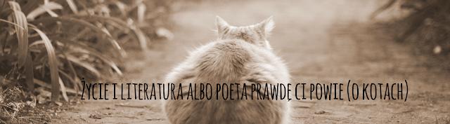 Życie i literatura albo poeta prawdę ci powie (o kotach)