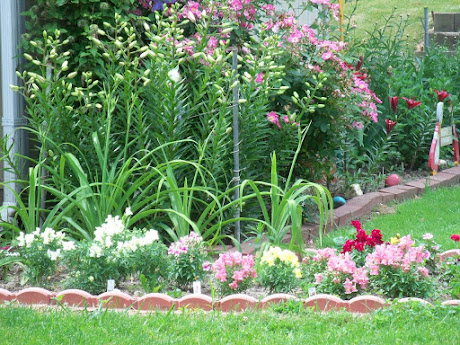 Our flower garden near our shed.  2012