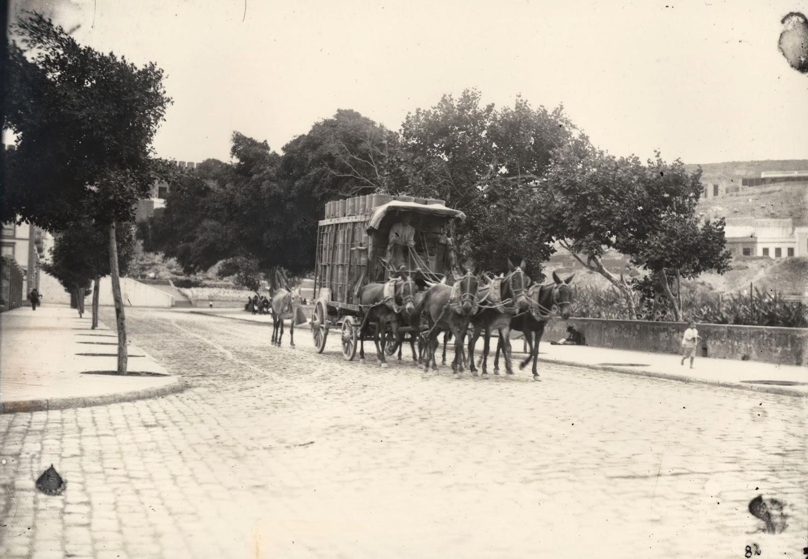 """Imagen nº07355 """"Cargando Huacales en el camino nuevo"""" propiedad de la FEDAC/CABILDO DE GRAN CANARIA. Realizada entre los años 1910-1915 por Kurt Hermman."""